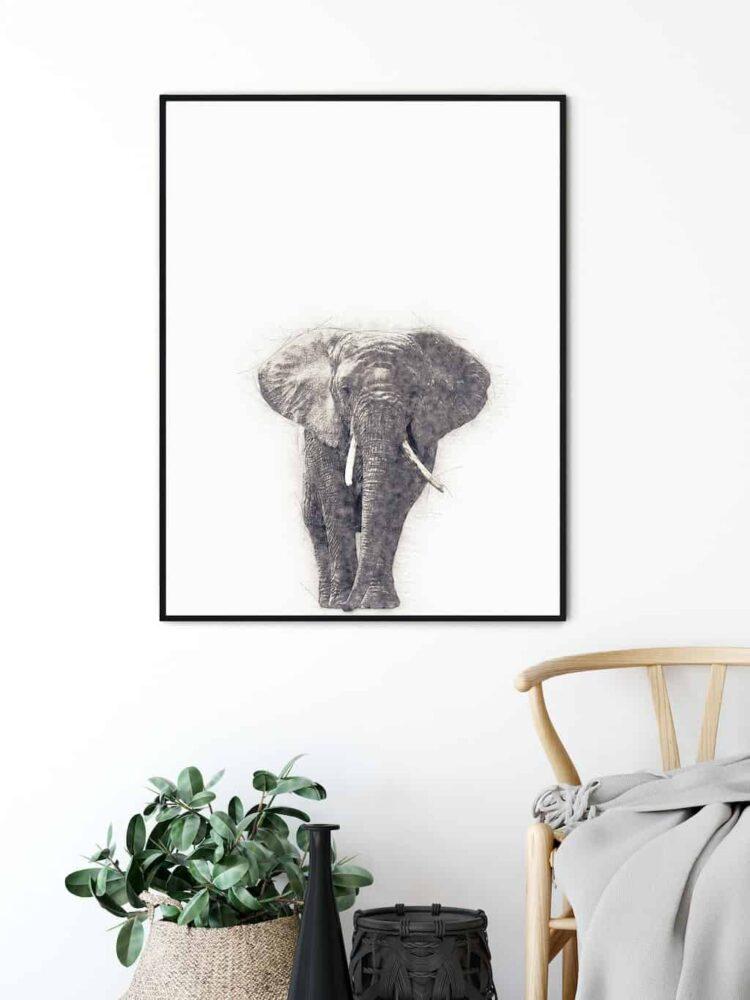 African Elephant poster art wall entrance noanahiko
