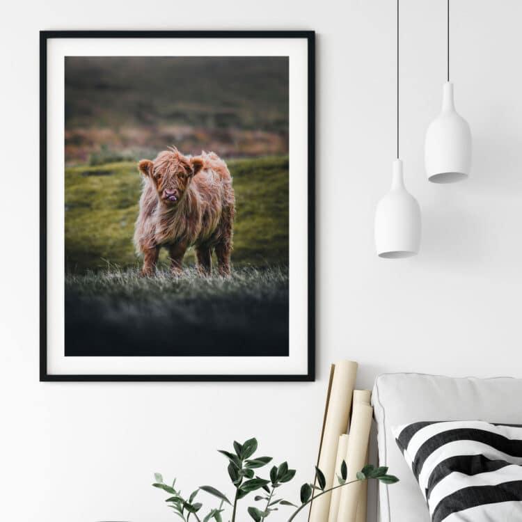 Baby Cow Noanahiko Printable Wall Art 0104