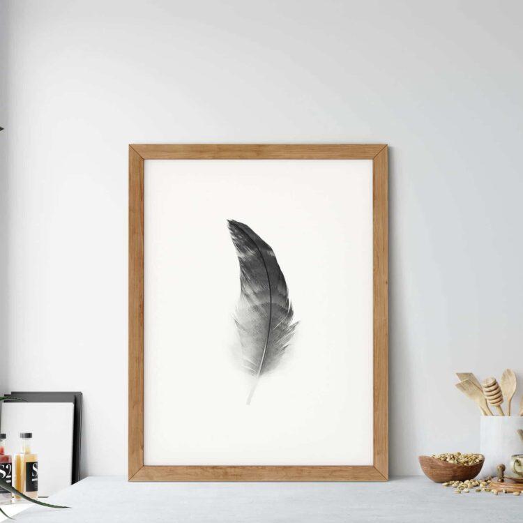 Black Feather Noanahiko Wall Art 0108