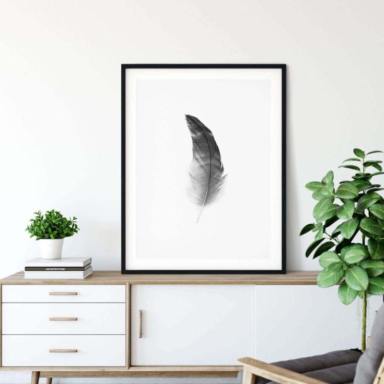 Black Feather Poster photography Noanahiko W 0108