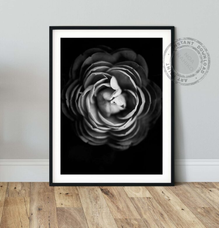 Black Rose Poster Noanahiko Art Print 1