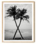 Coconut The Beach Noanahiko Photo Print 0099