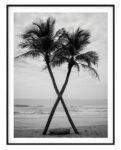 Coconut The Beach Noanahiko Printable 0099