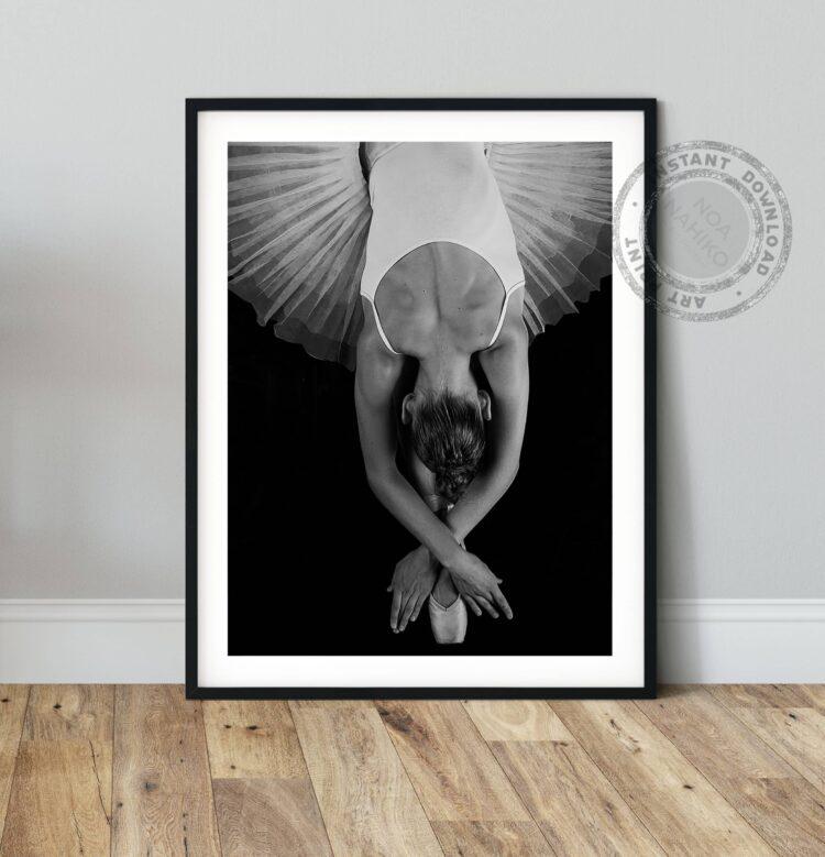 Dance Ballerina Poster noanahiko download