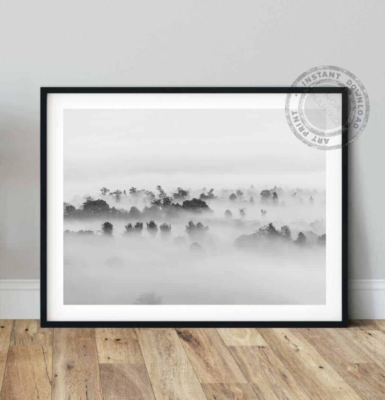 Foggy Forest Tropical Trees Poster noanahiko