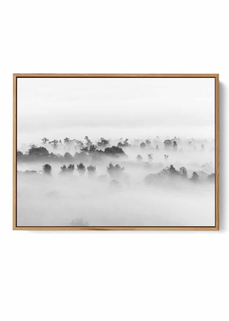 Foggy Forest Tropical Trees Poster noanahiko art W print