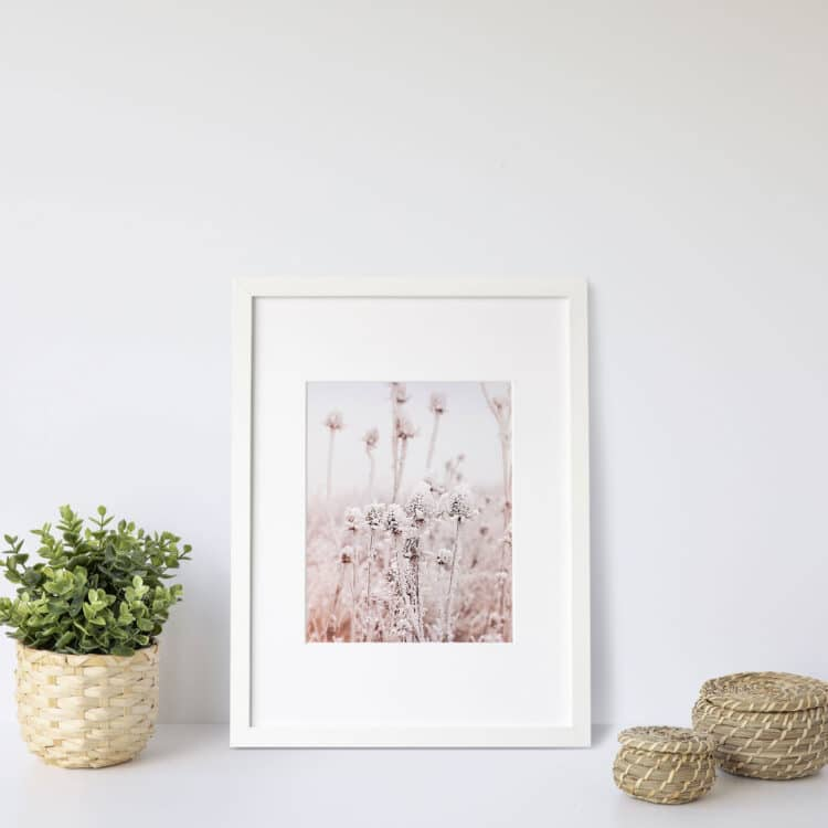 Frosty Dry Herb Noanahiko Art Print 0136