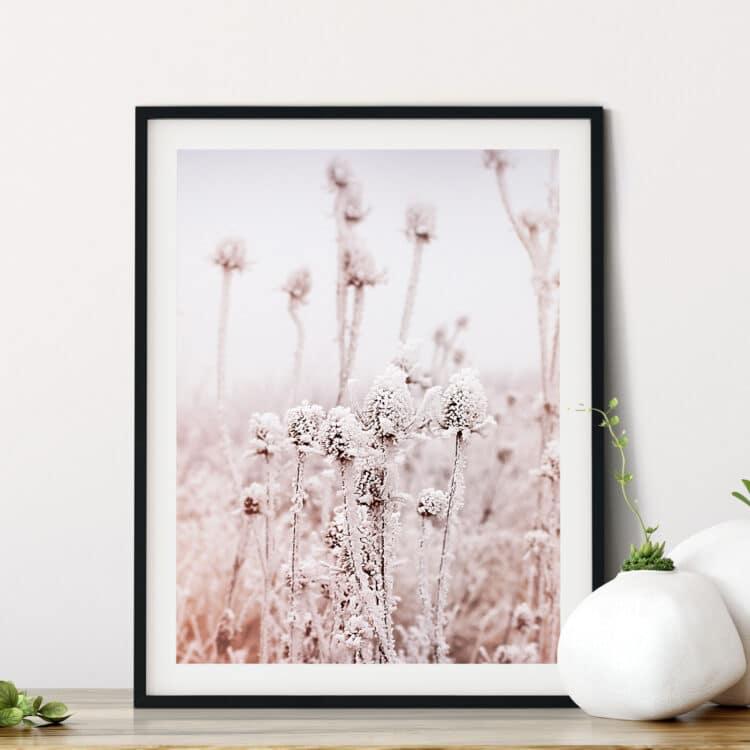 Frosty Dry Herb poster print Noanahiko 0136