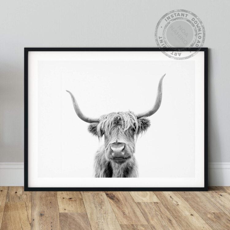 Highland Cow Scotland Noanahiko Art Print 0153