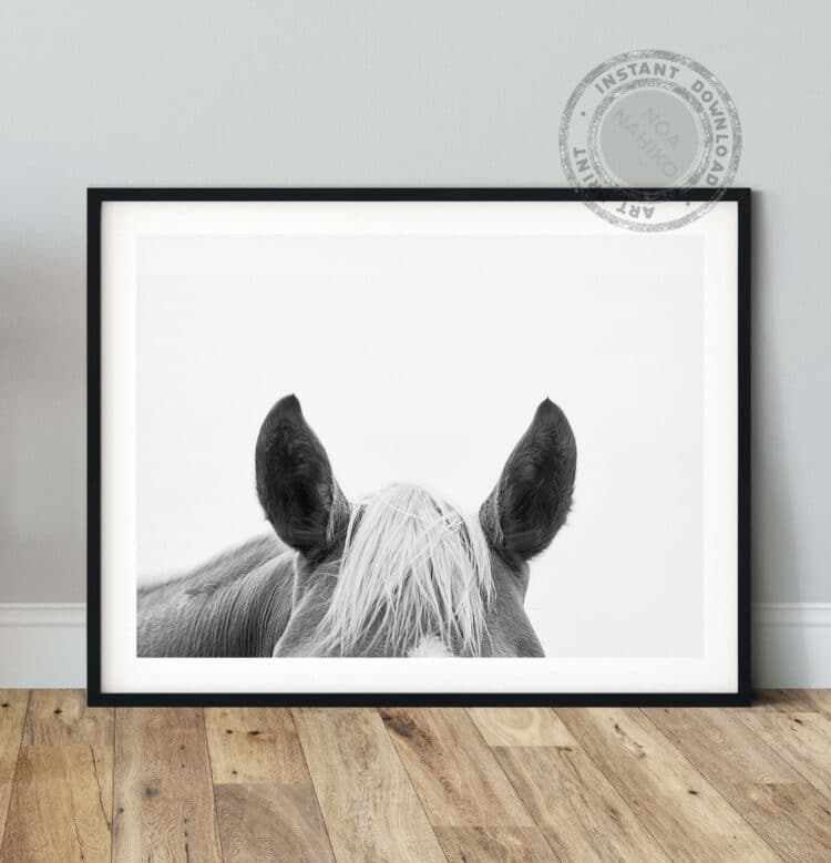 Horse Ears Noanahiko art 0127