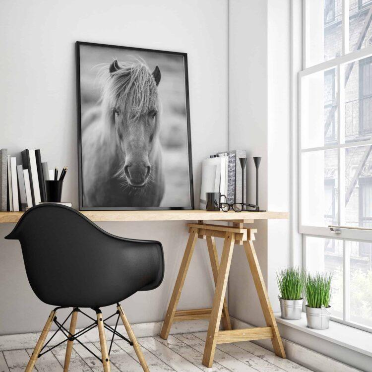 Icelandic Horse Scottland printable