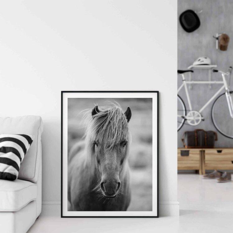 Icelandic Horse Scottland printable home decor wall