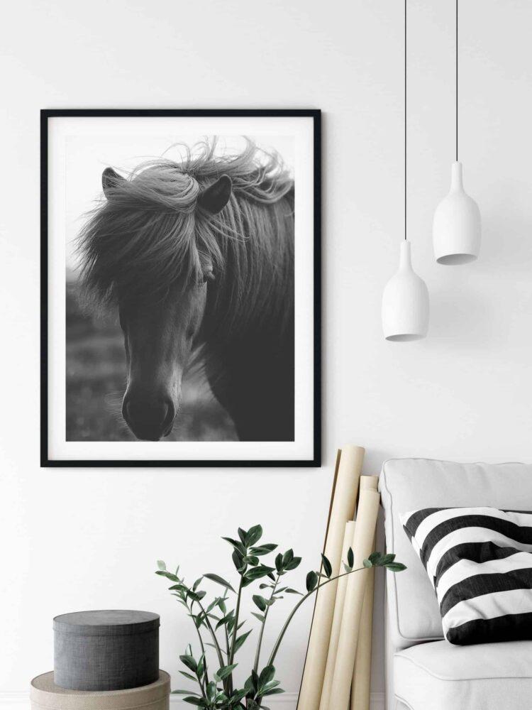 Island Black Horse poster noanahiko art print download scaled 1