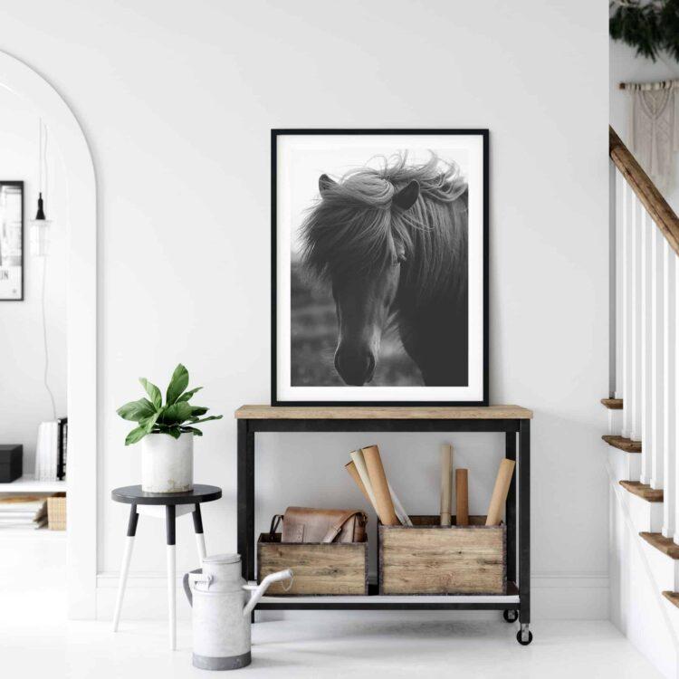 Island Black Horse poster noanahiko art printable