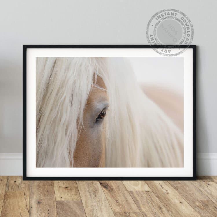 Portrait Haflinger Horse Noanahiko Art Print 0180 1