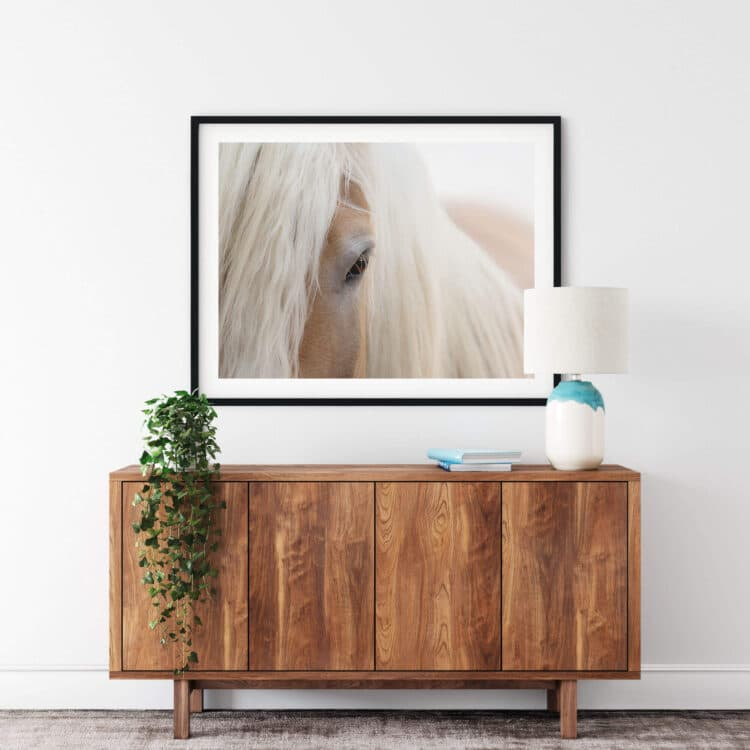 Portrait Haflinger Horse Noanahiko Printable 0180