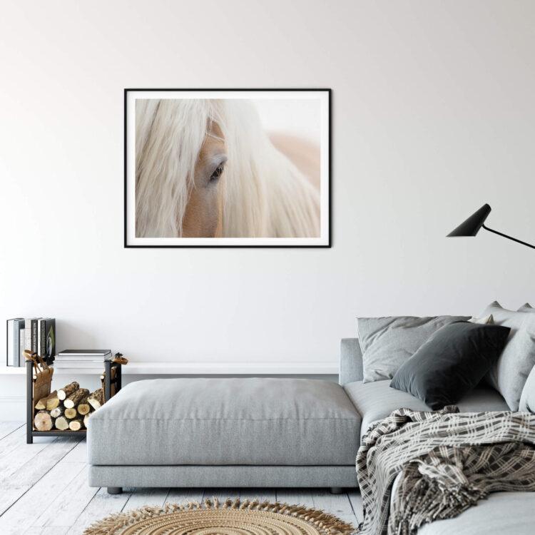 Portrait Haflinger Horse poster print Noanahiko 0180