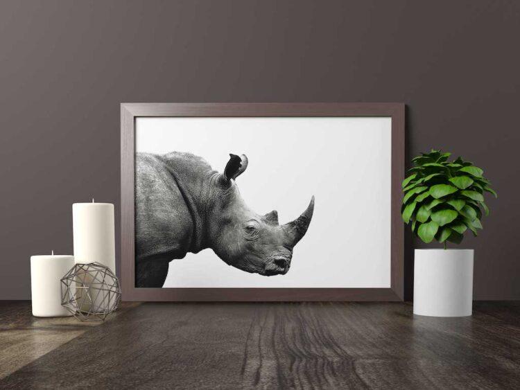 Rinoceronte decoracion cuadro salon lamina poster min