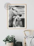 Scottish Horses Poster noanahiko wall art photo printable