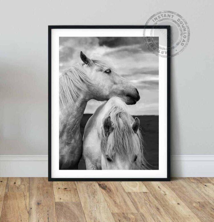 Scottish Horses Poster noanahiko wall art print photo