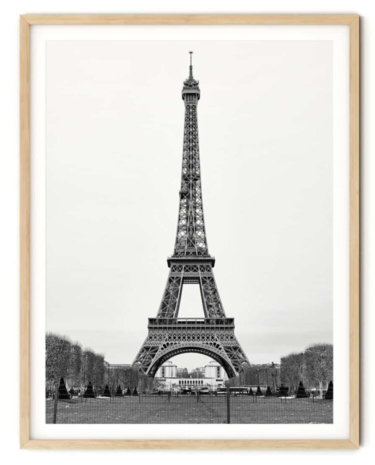 The Eiffel Tower in Paris Poster noanahiko photography