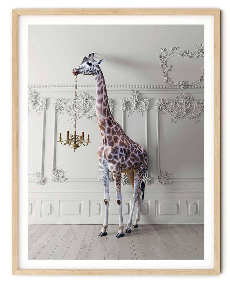 The Giraffe with a Chandelier Noanahiko art print 0091
