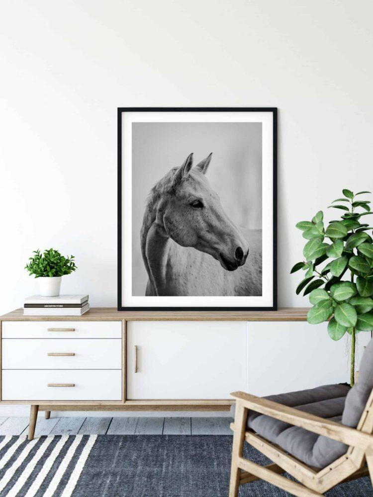 White Horse Poster noanahiko printable photography scaled 1