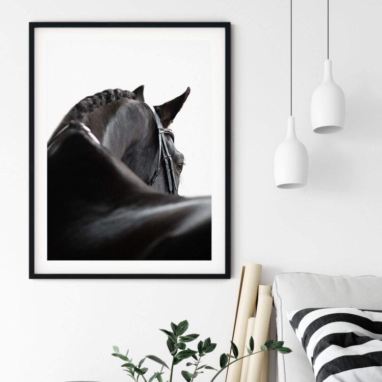 Black Horse Noanahiko Printable Wall Art 0139