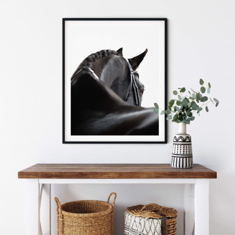 Black Horse Noanahiko art 0139