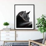 Black Horse Poster Noanahiko 0139