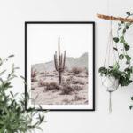 Grand Canyon Cactus L Noanahiko Printable Wall Art 0196 01