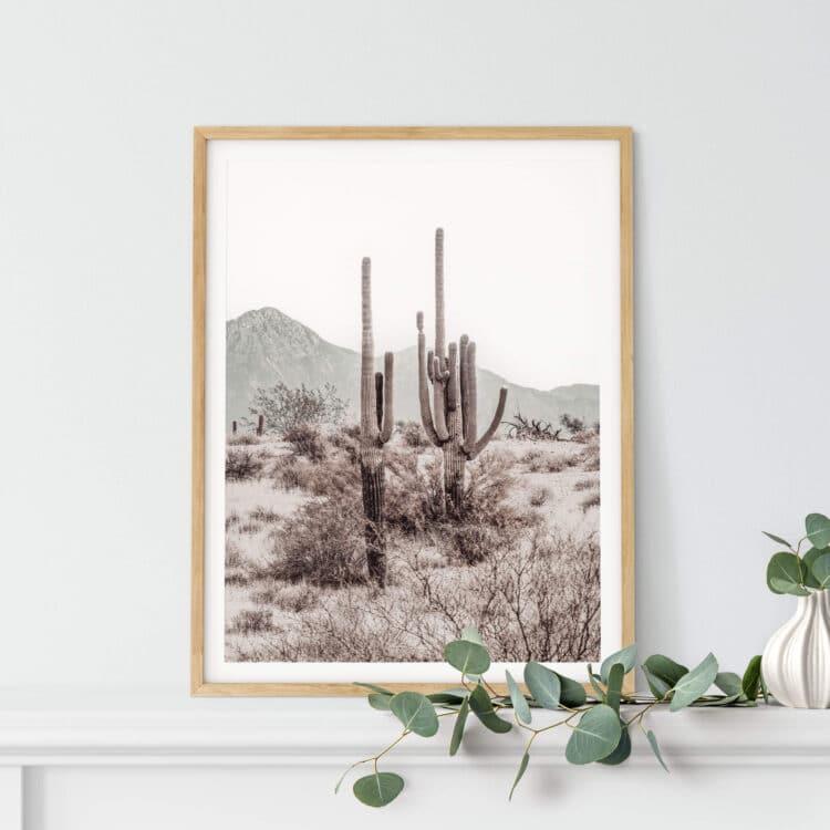 Grand Canyon Cactus R Noanahiko Art Print 0196 03