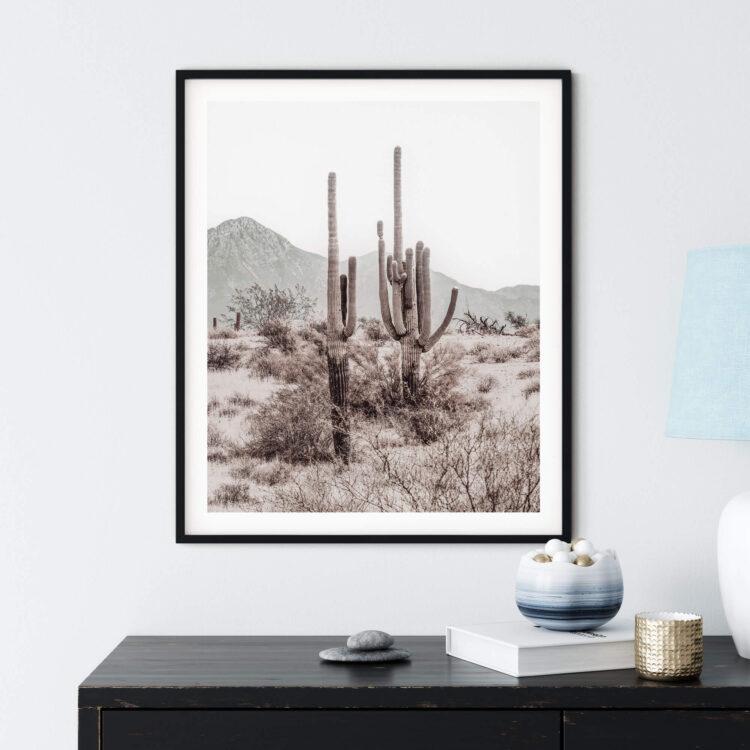 Grand Canyon Cactus R Noanahiko Photo Print 0196 03