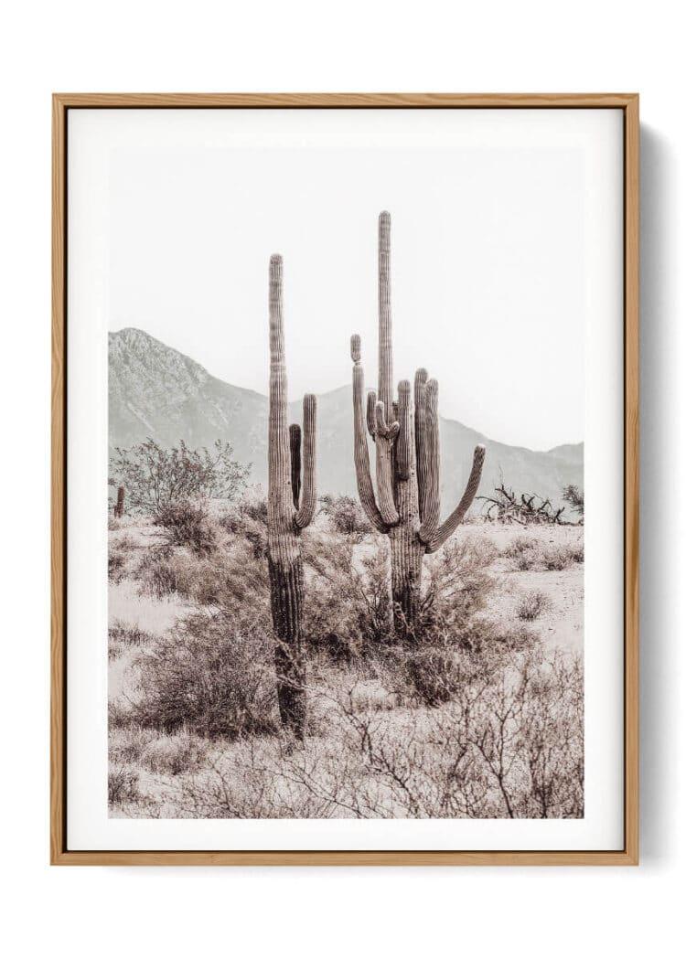 Grand Canyon Cactus R Noanahiko Printable 0196 03 w right