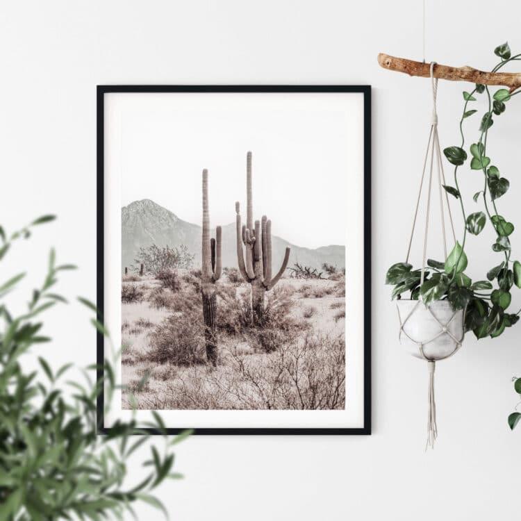 Grand Canyon Cactus R Noanahiko Printable Wall Art 0196 03