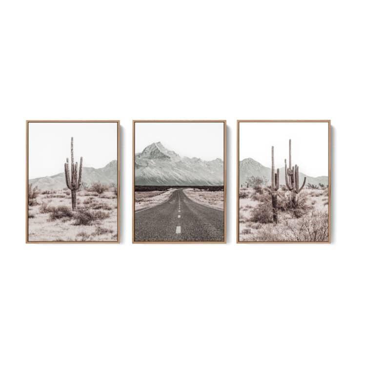 Grand Canyon Set 3 Desert Cactus Noanahiko Art Print 0196