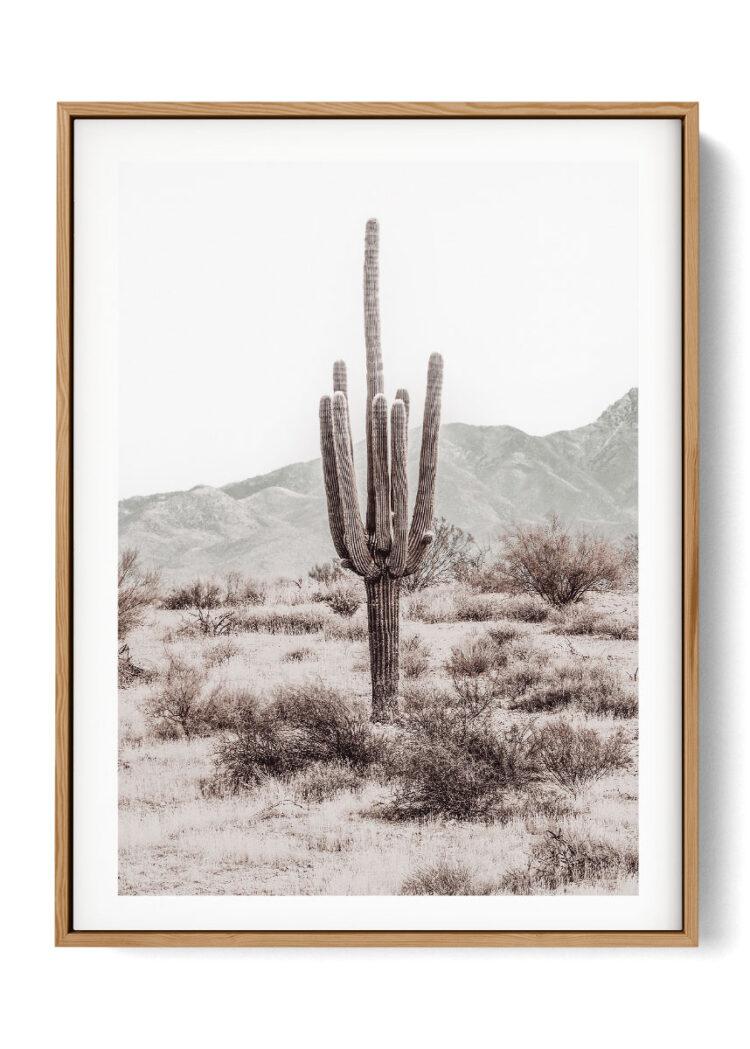 Grand Canyon Set 3 Desert Cactus Noanahiko Printable 0196 w left
