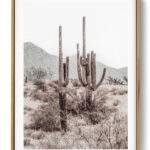 Grand Canyon Set 3 Desert Cactus Noanahiko Printable 0196 w right