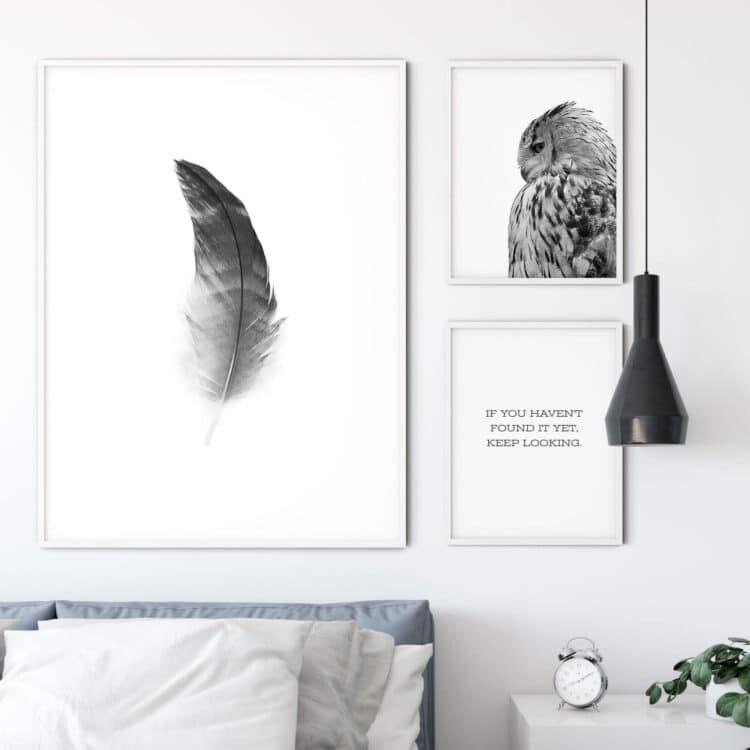 Set of 3 Prints Quote Owl Feather Noanahiko Art Print 0121