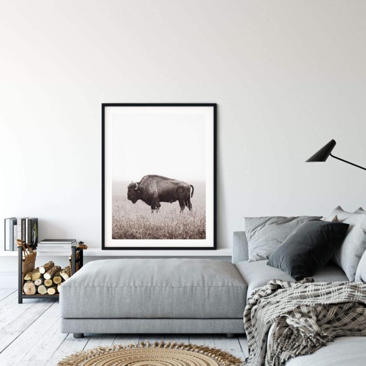 American Buffalo Bison Poster Noanahiko Photo Print 0200