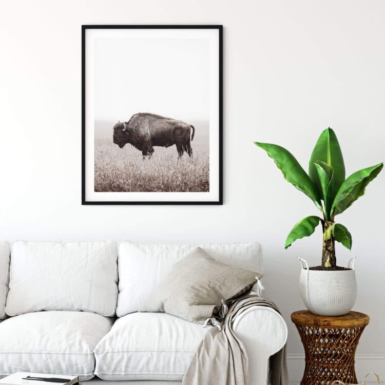 American Buffalo Bison Poster Noanahiko Printable 0200