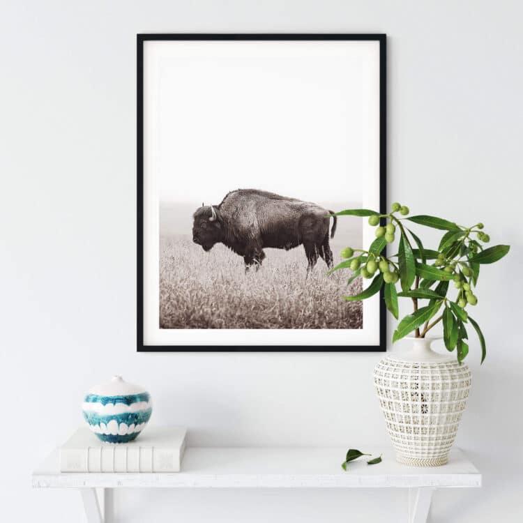 American Buffalo Bison Poster Noanahiko Printable Wall Art 0200