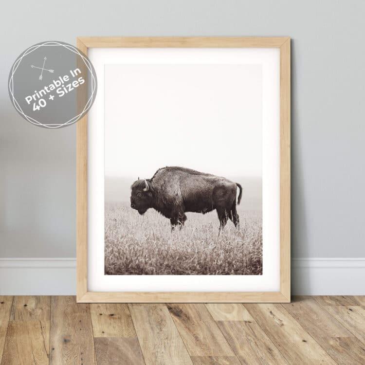 American Buffalo Bison Poster Noanahiko art 0200 1