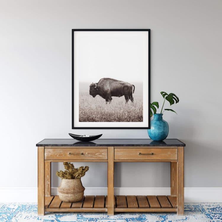 American Buffalo Bison Poster Poster photography Noanahiko 0200