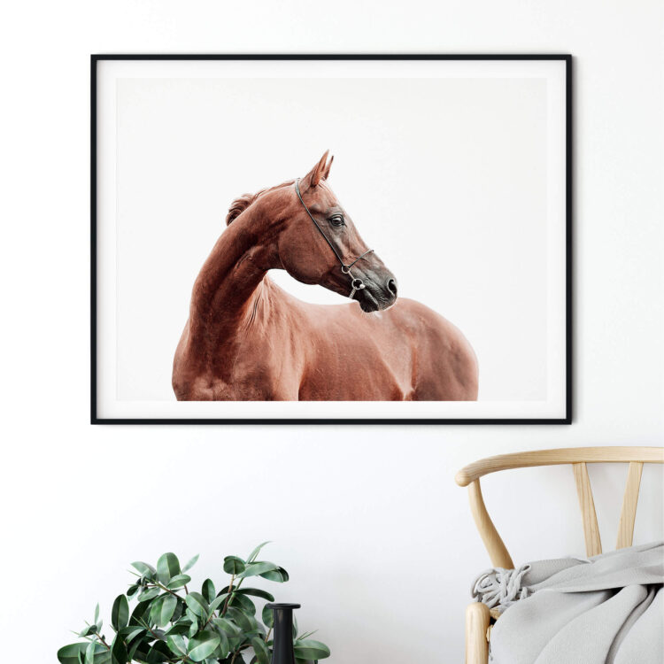 Horse art print Noanahiko Printable Wall Art 0191
