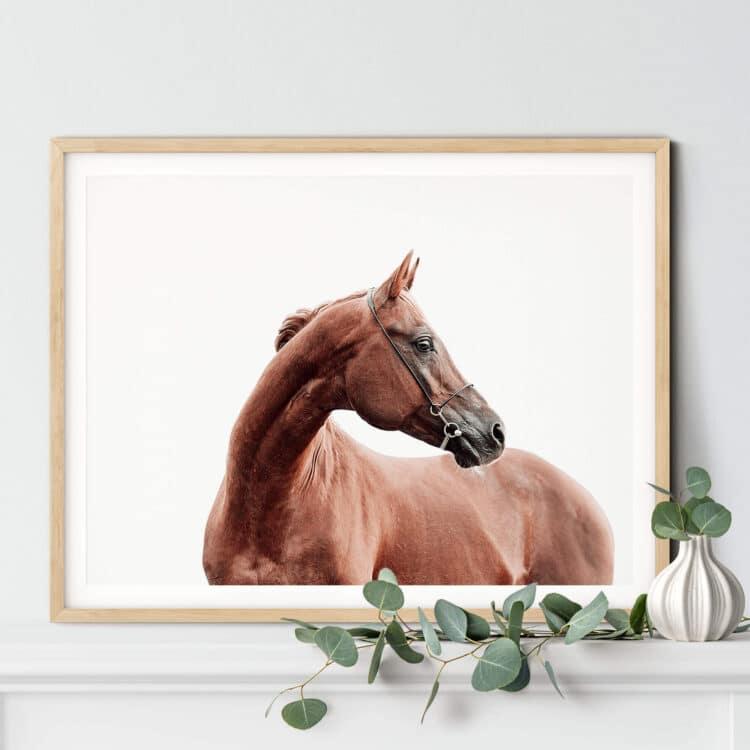 Horse art print Noanahiko art 0191