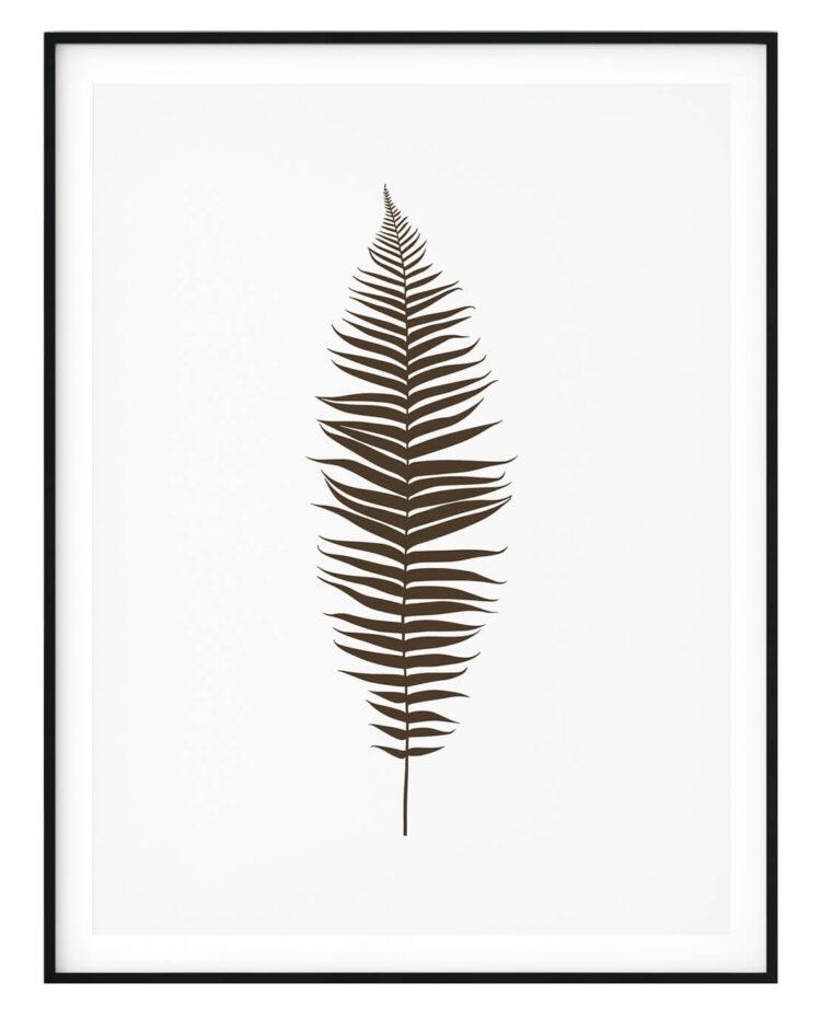 Set 3 prints Fern Leaves poster print Noanahiko 0133
