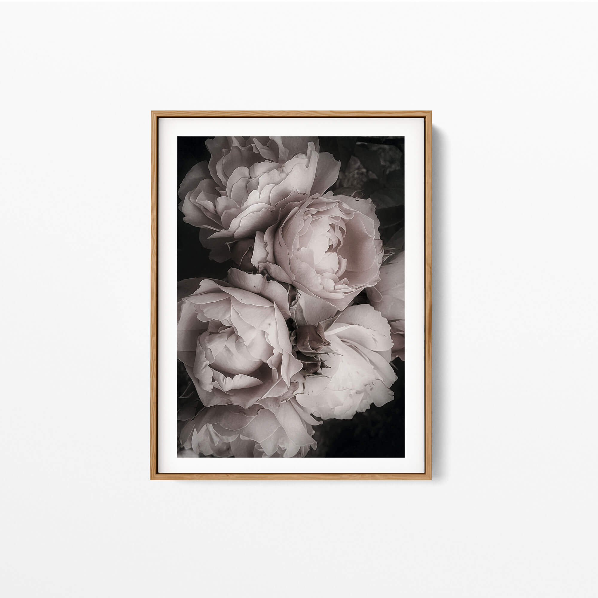 Bouquet Pink Roses Noanahiko Art Print 0202