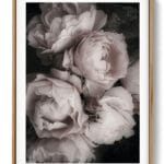 Bouquet Pink Roses Noanahiko Photo Print 0202 1