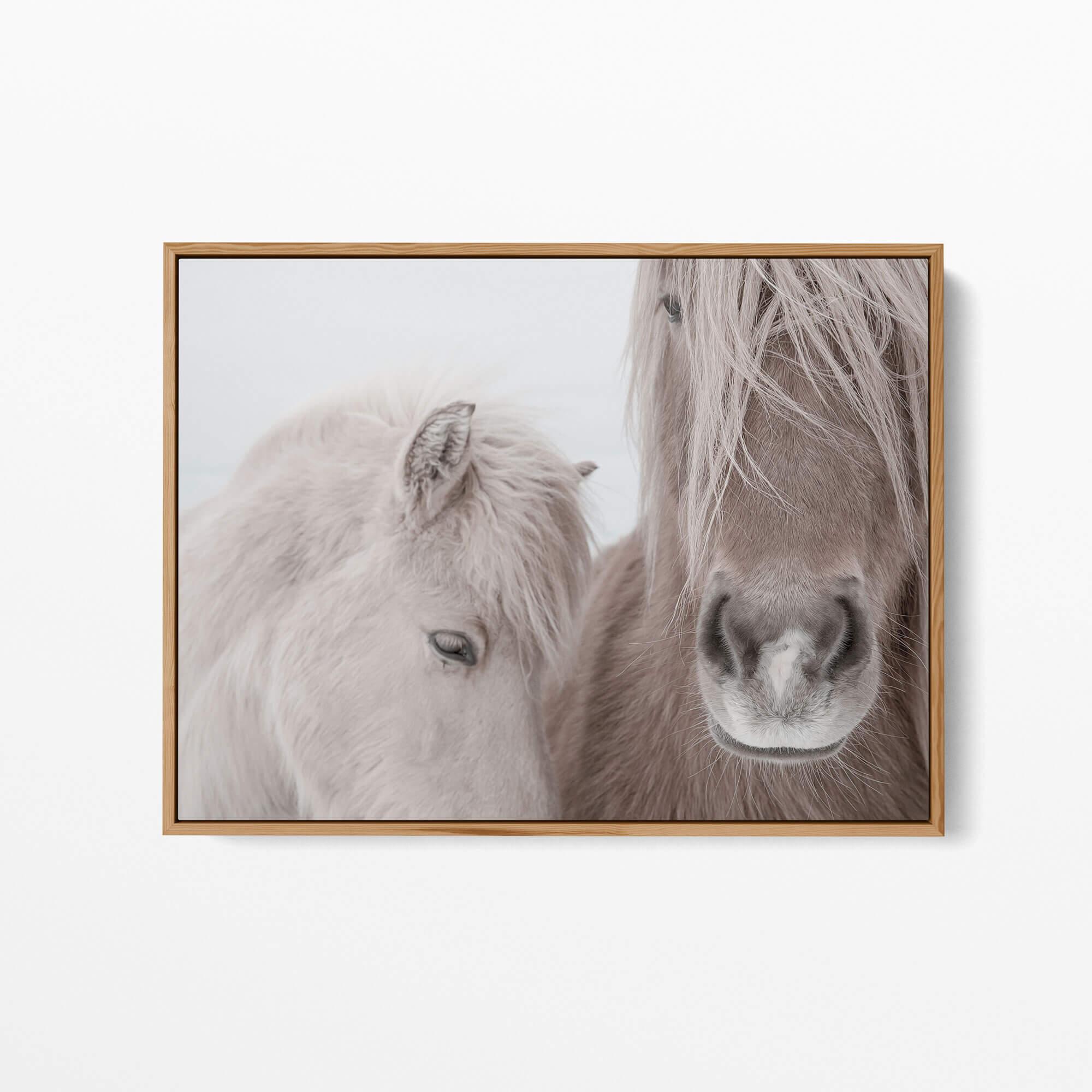 Two Horses Noanahiko Art Print 0144